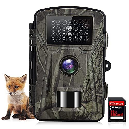 SuntekCam 36MP 2.7K Fotocamera Caccia Fototrappola per la fauna selvatica fototrappolaper la visione notturna a infrarossi con LED IR 940nm, timer e impermeabile IP66 con scheda SD da 16GB-HC-806A