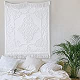 Madison Park Chloe 100% Cotton Tufted Chenille Design with Fringe Tassel Luxury Elegant Chic Lightweight, Breathable Cover, Luxe Cottage Room Décor Summer Blanket, 50' x 60', Ivory