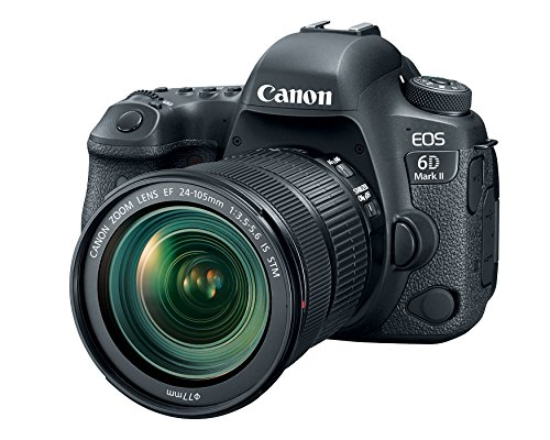Canon EOS 6D Mark II with EF 24-105mm IS STM Lens...