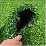 Protección De La Privacidad Valla De Jardín Alfombra De Pared De Fondo 2,0 Cm Hierba Alta para Decoración De Interiores Y Exteriores Cerca De Privacidad De Césped De Plantas