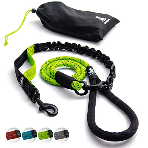 Heavy Duty Rope Bungee Leash for Large and Medium Dogs with Anti-Pull for Shock Absorption - No Slip Reflective Leash for Outside (Green)