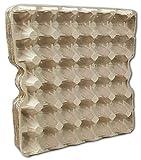 Ingbertson Cajas de huevos para huevos de gallina, sin estampado, 10 unidades,...
