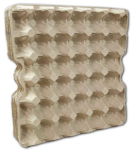 Ingbertson Cajas de huevos para huevos de gallina, sin estampado, 10 unidades, para 30 huevos