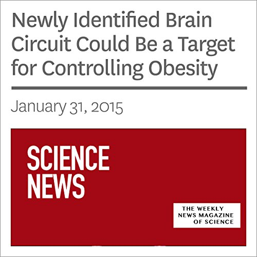 Newly Identified Brain Circuit Could Be a Target for Controlling Obesity audiobook cover art