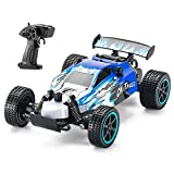 LDB Direct Remote Control Car, RC Car 2.4 GHZ High Speed Racing Car 1:20 2WD Electric Sport Racing Hobby Cars Christmas Birthday Gifts for Boys Girls Adults Kids (Blue)
