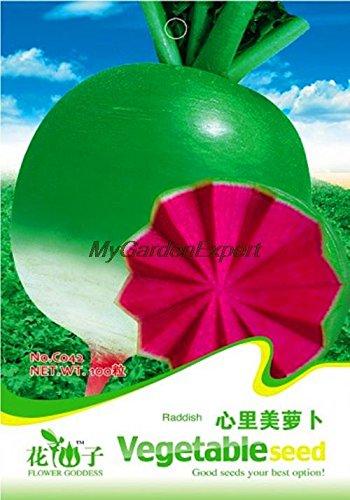 Graines Jardin Radis de vente chaude, rouge coeur Radis, graines de légumes, Bonsai Plante en pot bricolage jardin