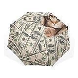 Paraguas Cute Kitten Cat Money Dollar 3 pliegues Ligero Anti-UV