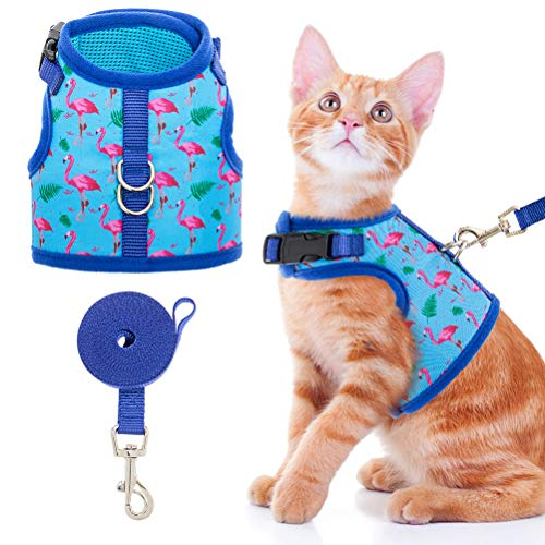 Cat Harness with Leash Escape Proof - Fashionable Mesh Cat Dog Walking Harness Leads, Adjustable for Kitties Puppies Small Animals