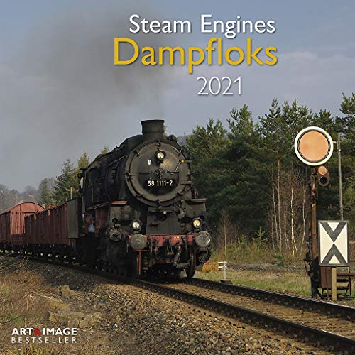 Dampfloks 2021 - Wand-Kalender - Broschüren-Kalender - A&I - 30x30 - 30x60 geöffnet: Steam Engines