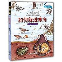 小牛顿动物百科大揭密 如何躲过寒冬