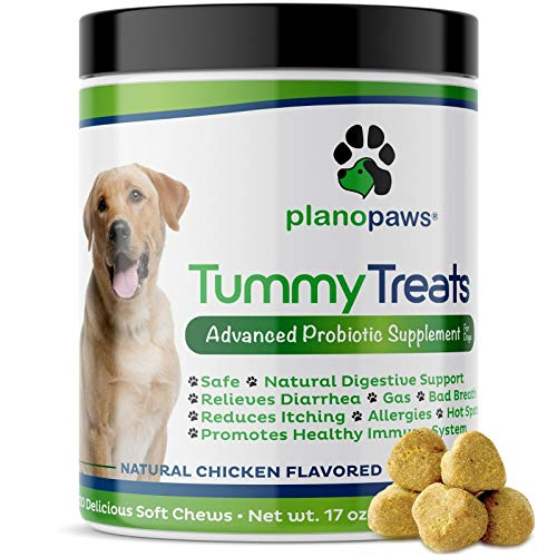 Tummy Treats - Probiotics for dogs - All Natural Dog Probiotics and Digestive Enzymes - Allergy Relief for Dogs - 120 Dog Breath Treats - Dog Allergy Chews - Fiber for Dogs - Safe Dog Breath Freshener