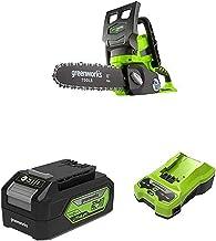 Greenworks 24V Cordless Chainsaw Battery Powered, 25cm Bar Length- 2000007 & Battery G24B4 2nd Generation & G24C 24V 2A Un...