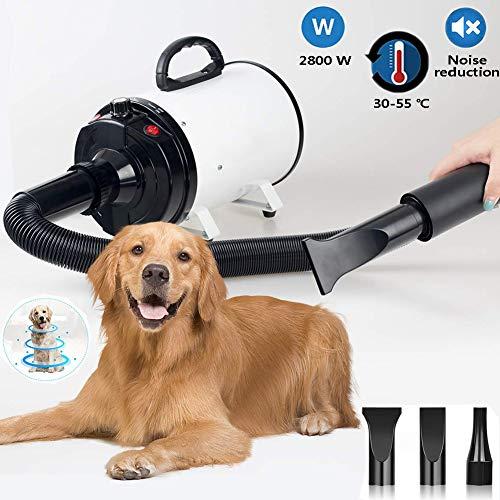 Hmpet 2800W Secador De Pelo para Mascotas Secador De Cabello Profesional para Pelo Perros Gatos Low Noise Perros Cuidado Secador Calor Ajustable Y Velocidad con Calentador,Blanco