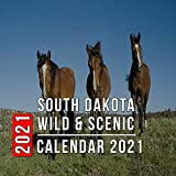 South Dakota Wild: 12 Month Mini Calendar from Jan 2021 to Dec 2021, Cute Gift Idea | Pictures in Every Month