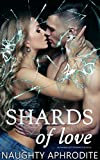 Shards Of Love: New Adult Romance Box Set (English Edition)