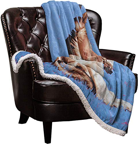 Roses Garden SuperSoftShaggySherpaWarmThrowBlankets Donkey Provide Fuzzy, Cozy Luxury Blanket Perfect Throw for Bed/Couch/Sofa (40'x50')