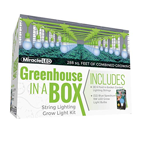 See the TOP 10 Best<br>Grow Light Kitchen Herb Garden