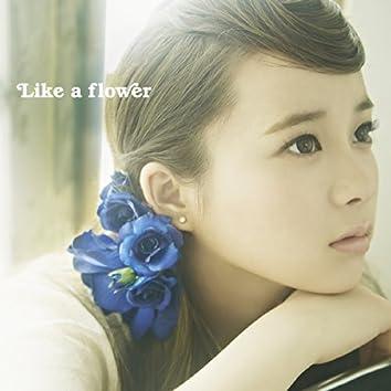 Like a flower<TYPE-B>
