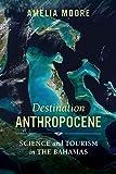 Destination Anthropocene (Critical Environments: Nature, Science, and Politics) (Volume 7)