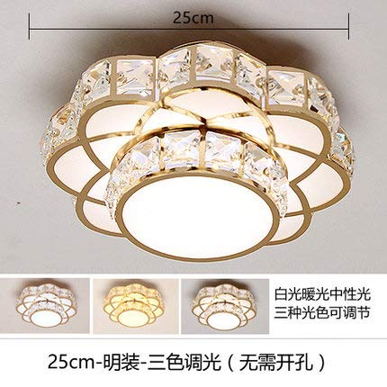 Aisle Lights/Ceiling Mounted Spotlights/Corridor Lights/Modern / Minimalist/Porch Lights/Round / Creative/Living Room/Led Crystal Lamps,25Cm Three Color Dimming