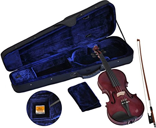 Steinbach 4/4 Geige im SET lila handgearbeitet