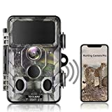 Best Trail Cameras - TOGUARD Upgraded Wildlife Camera WiFi Bluetooth 20MP 1296P Review