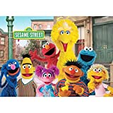 Sesame Street Happy Birthday Theme Photo Backgrounds 5x3ft Boy Girl 1st 2nd 3rd Birthday Party Photography Backdrops Baby Shower Supplies Dessert Cake Table Decor Vinyl