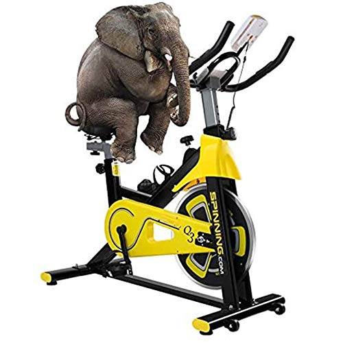 Aocean Stationary Spinning Exercise Bike for Home Indoor Gym Fitness Bike Training Fitness Equipment 6 KG Flywheel Adjustable Resistance with Heart-Rate Adjustable Seat