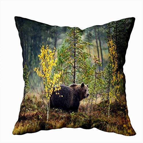 Funda de almohada, cojín de regalo para padre, sofá suave para el hogar, fundas de almohada decorativas, oso pardo en otoño, adulto, hombre grande, científicoNombre Natural Habitat Doble Estampado