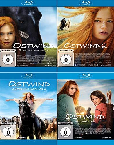 Ostwind 1+2+3+4 - (Aufbruch nach Ora / Aris Ankunft) - alle 4 Kinofilme im Set (4 Blu-ray)