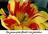 Du jaune pour fleurir vos journées (Calendrier mural 2018 DIN A4 horizontal): Des fleurs jaunes pour ensoleiller vos mois toute une année (Calendrier ... [May 07, 2017] Brillard, Thierry