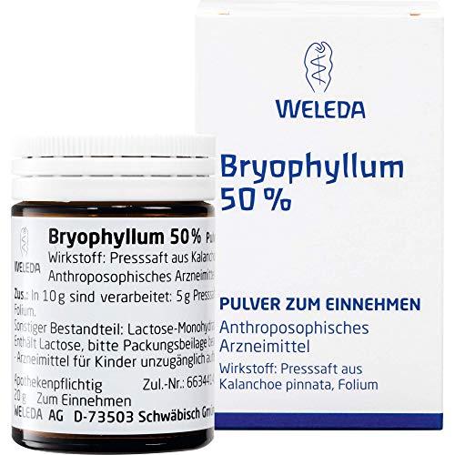 WELEDA Bryophyllum 50% Pulver, 50 g Pulver