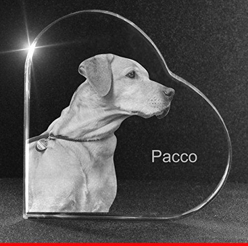 VIP-LASER 2D Gravur Glasherz XL mit Deinem Hundefoto Hund graviert!. Dein Wunschfoto für die Ewigkeit Mitten in Glas! Groesse XL = 80x80x19mm
