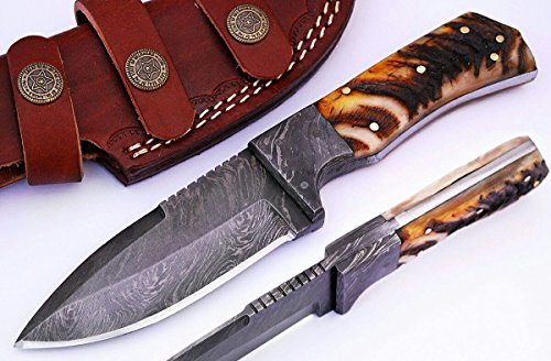 SharpWorld Beautiful Damascus Knife Made Of Remarkable Damascus Steel Multi Handles -Best Hunting Knife With Sheath TJ103 (Ram Horn)
