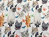 Stoff aus 100 % Baumwolle – niedlicher Katzen- und