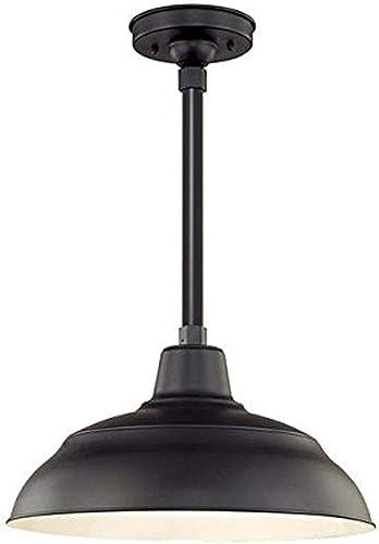 high quality Millennium wholesale discount RWHS17-SB One Light Warehouse Shade, Black online