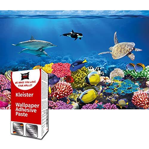 GREAT ART Fototapete Ozean Unterwasserwelt 210 x 140 cm – Wandbild Kinderzimmer Fische Meerestiere Korallen Riff Clown Fish Delphin Wandtapete – 5 Teile Tapete inklusive Kleister