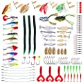 Marfish Fishing Lures Bait Tackle Box 106 pcs Including Spoon Lures Soft Plastic Worms Spinnerbaits Fish Shape Lures Frogs crankbait Jigs topwater Lures for Saltwater/Fresh Water Fishing Gear Lures