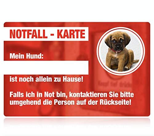 SECYOURITY / Notfallkarte für Haustiere/Rettung im Notfall von Hund Katze Vogel Kleintier / 5 Stück für Geldbörse (8.5 x 5.5 cm, Hund)