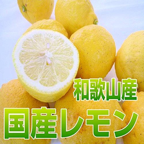 国産(和歌山県産)レモン/グリーンレモン 10kg 少し訳あり ノーワックス