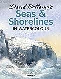 Bellamy, D: David Bellamy's Seas & Shorelines in Watercolour - David Bellamy