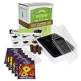 Annual Flower Garden Seed Starter Kit | Basic | 6 Varieties of Flower...