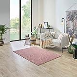 Carpet Studio Ohio - Alfombra de salón, 115 x 170 cm, suave pelo corto, para salón, comedor y dormitorio, fácil cuidado, olor neutro, color rosa