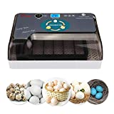 Egg Incubators for Hatching Eggs with Automatic Turner Poultry Hatcher Machine General Digital