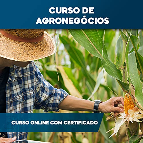 Curso Online em videoaula de Agronegócio com Certificado