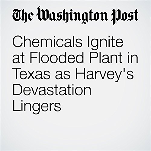 Chemicals Ignite at Flooded Plant in Texas as Harvey's Devastation Lingers copertina