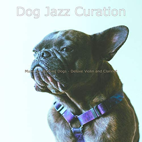 Dog Jazz Curation