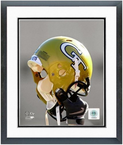 Georgia Tech Yellow Jackets NCAA Double Matted 8x10 Photograph Team Logo