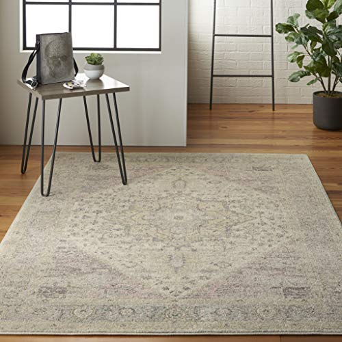 Nourison TRA06 Tranquil Persian Vintage Ivory/Pink Area Rug 6' X 9'