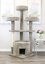 Cat Trees For Large Cats A Buyers Guide Kittycattree Com